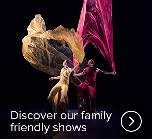 Discover our family friendly shows